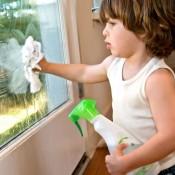 Ustensile curatarea geamurilor (4)